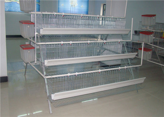China Low Carbon Steel Wire Kenya 96 Birds Layer Chicken Battery Cages For Poultry Farm supplier
