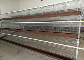 China Electric Galvanized 128 Chickens Poultry Cage For Laying Hens , Battery Caged Hens supplier
