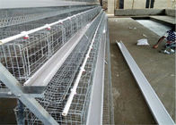 China Electo Galvanized Chicken Layer Cage / Poultry Layer Cage Used For Chicken Farm company