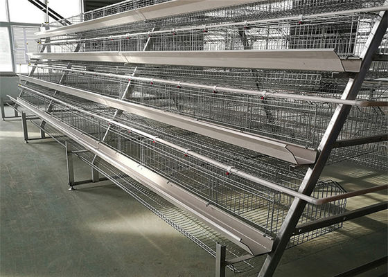 Hot Galvanized 4 Layers 5 Rooms 160 Chicken Layer Cage For Laying Hens