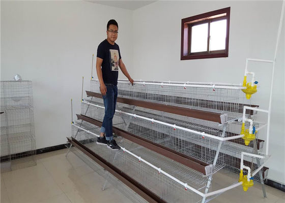 China 1.88m , 2m , 2.15m , 3m Length Battery Cage For Layers Design For Mozambique factory