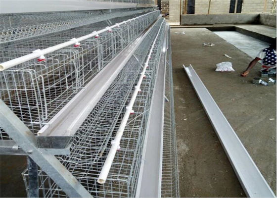 China Electo Galvanized Chicken Layer Cage / Poultry Layer Cage Used For Chicken Farm factory
