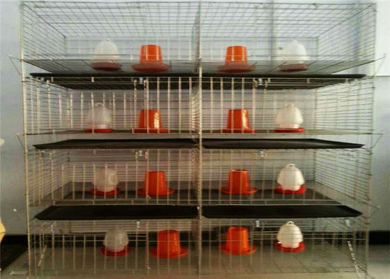 China 20 Years Lifespan Galvanized 4 Doors Easy Installed H Type Broiler Chicken Cages factory